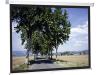 Projecta Slim Screen 200x200 Projectiescherm Wit
